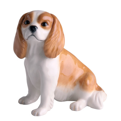 King Charles Spaniel (Blenheim)